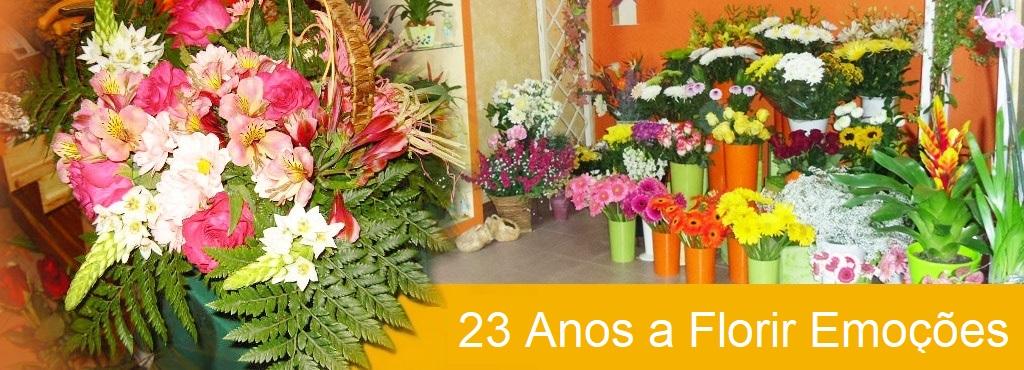florista_jusart_flores_plantas_rosas_jardim